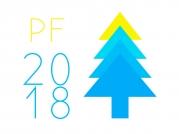 Krásné Vánoce a úspěšný nový rok 2019!